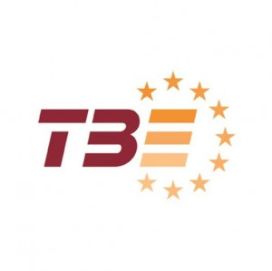 logo for Tiles and Bricks Europe