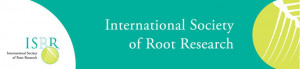logo for International Society of Root Research