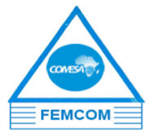 logo for COMESA Federation of National Associations of Women in Business