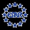 logo for European Society of Neuroradiology