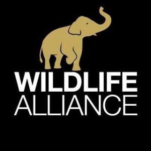 logo for Wildlife Alliance