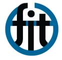 logo for Fondazione Internazionale Trieste per il Progresso e la Libertà delle Scienze