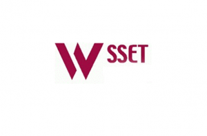 logo for World Society of Sustainable Energy Technologies
