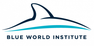 logo for Blue World Institute of Marine Research and Conservation