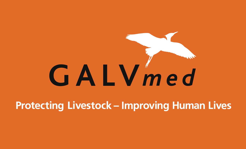 logo for GALVmed