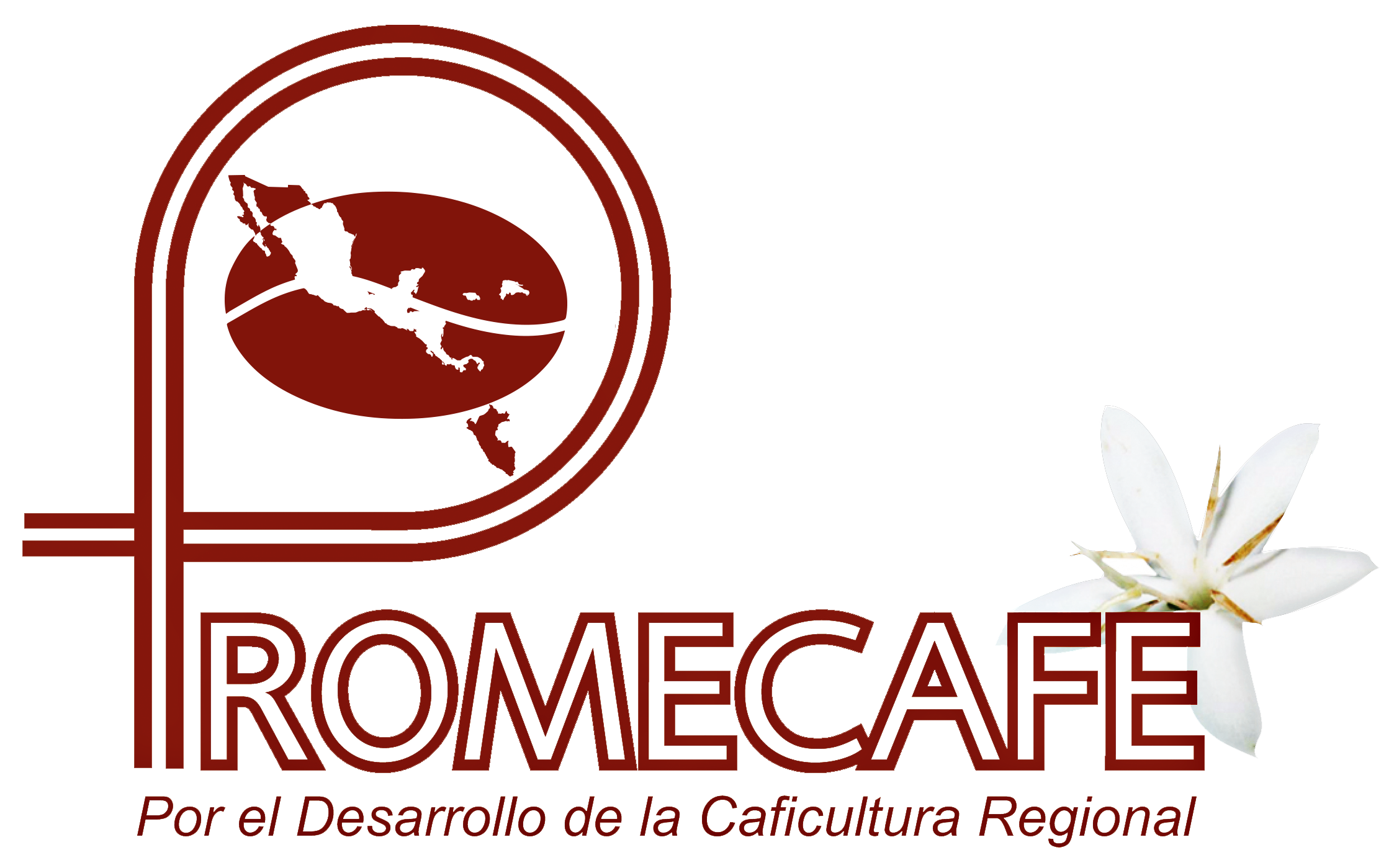 logo for Regional Cooperative Program for the Technological Development and Modernization of Coffee Cultivation in Central America, Panama, Dominican Rep and Jamaica