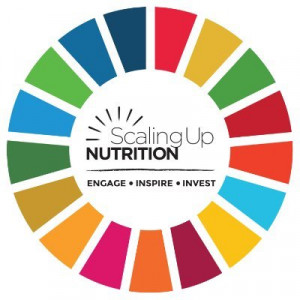 logo for Scaling Up Nutrition Movement