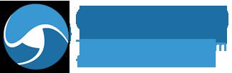 logo for Global Institute for Risk Management Standards