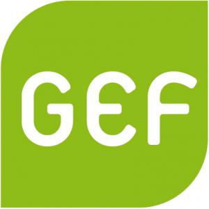 logo for Green European Foundation