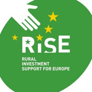 logo for Rural Investment Support for Europe Foundation