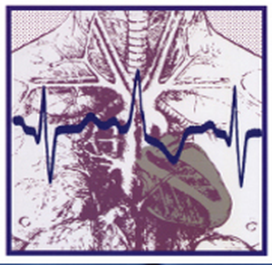 logo for Computing in Cardiology