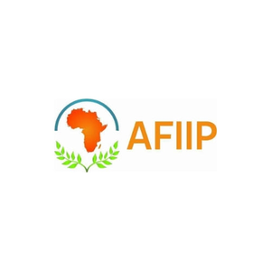 logo for African International Institute for Peace